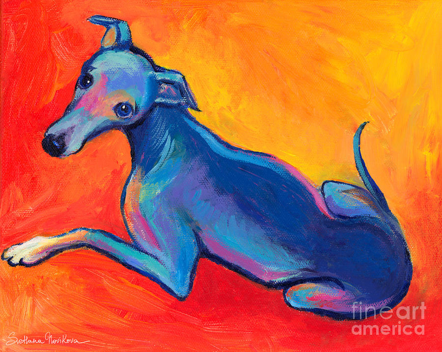 Colorful Greyhound Whippet Dog Painting Painting  - Colorful Greyhound Whippet Dog Painting Fine Art Print