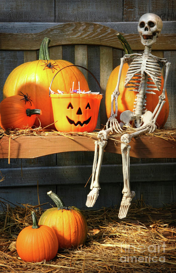 Autumn Photograph - Colorful Pumpkins And Skeleton On Bench by Sandra Cunningham