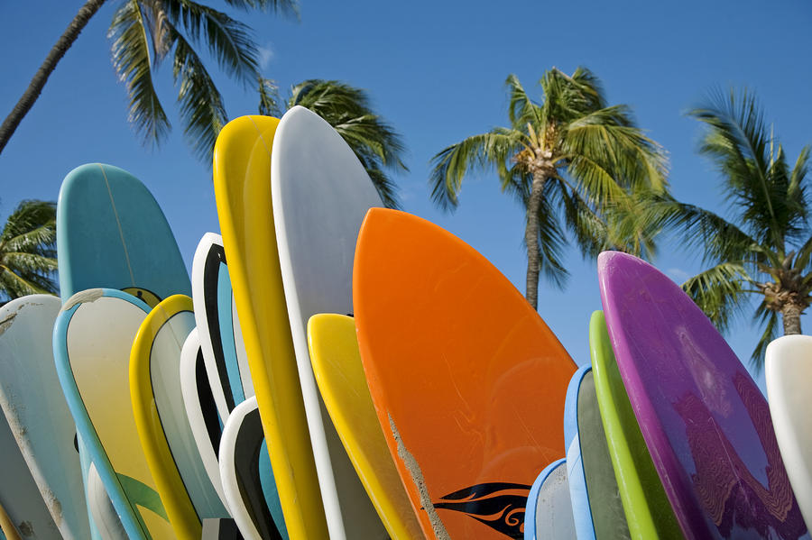Colorful Surfboards Photograph  - Colorful Surfboards Fine Art Print