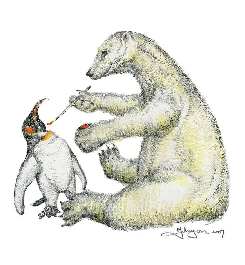 Colour Bear Drawing