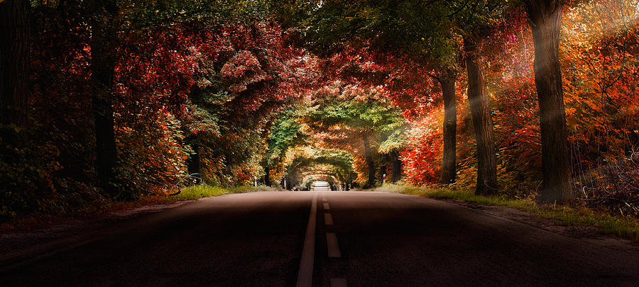 Colourful Way Photograph