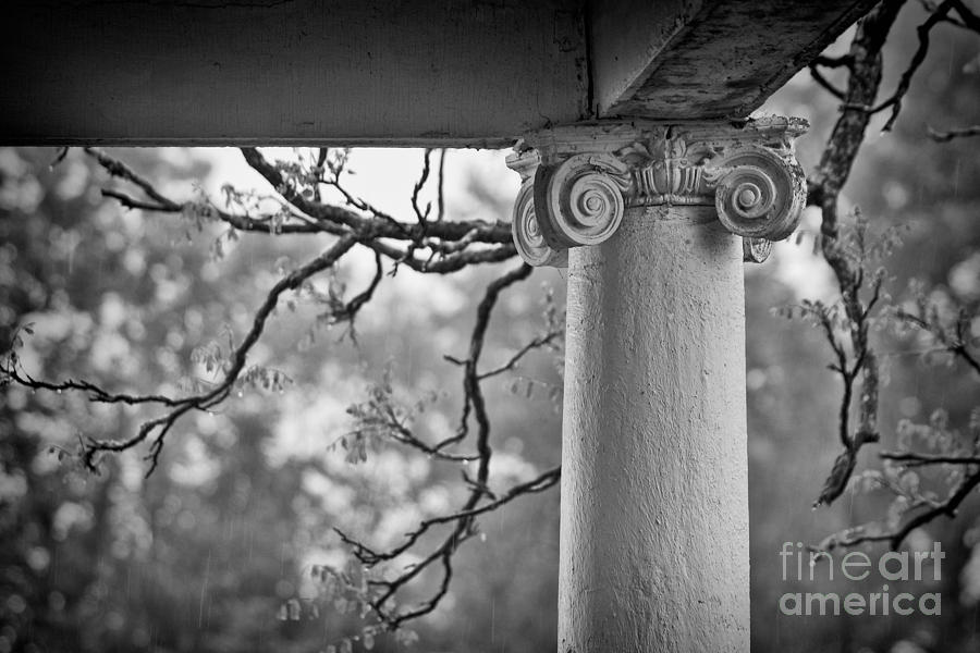 Column Photograph - Column In Spring by Susan Isakson