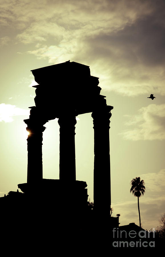 Column Sunset Temple Of Castor And Pollux In The Forum Rome Italy Photograph  - Column Sunset Temple Of Castor And Pollux In The Forum Rome Italy Fine Art Print