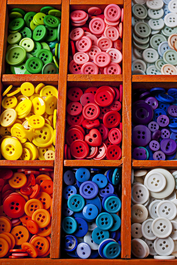 Compartments Full Of Buttons Photograph