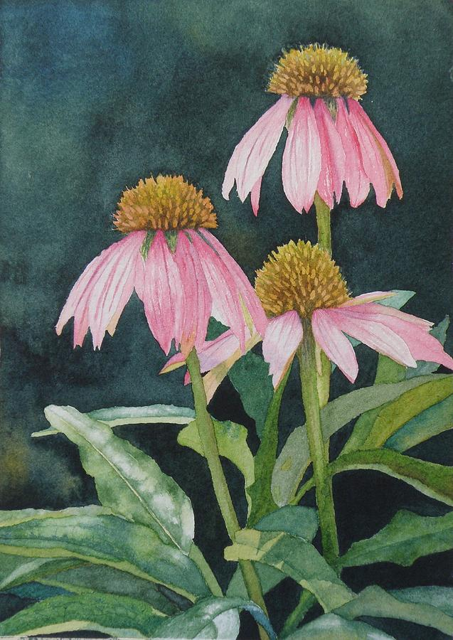 Coneflowers Painting  - Coneflowers Fine Art Print