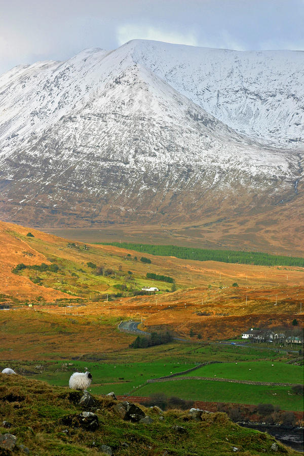 Connemara Winter Photograph  - Connemara Winter Fine Art Print
