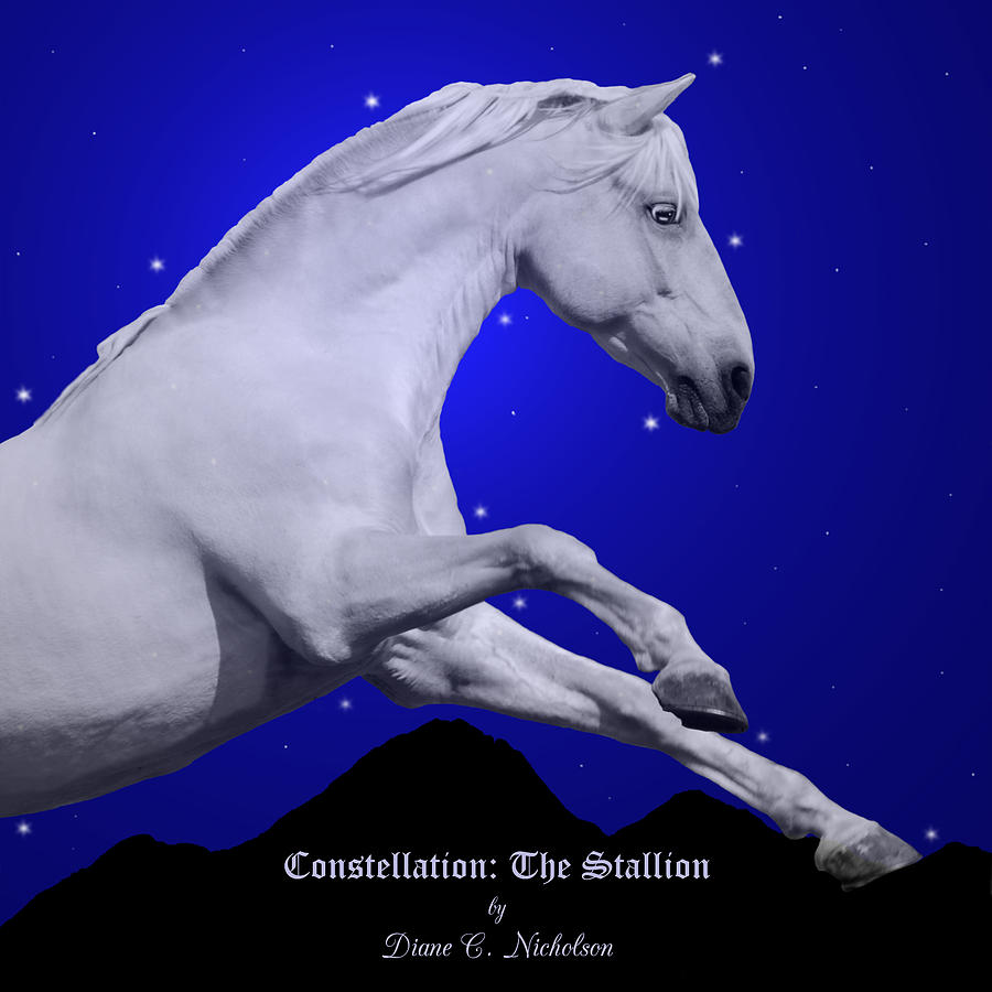 Constellation The Stallion Photograph  - Constellation The Stallion Fine Art Print