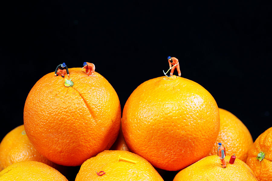 Construction On Oranges Photograph  - Construction On Oranges Fine Art Print