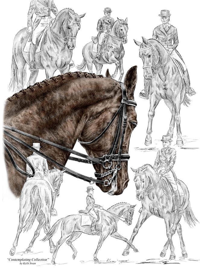 Contemplating Collection - Dressage Horse Print Color Tinted Drawing