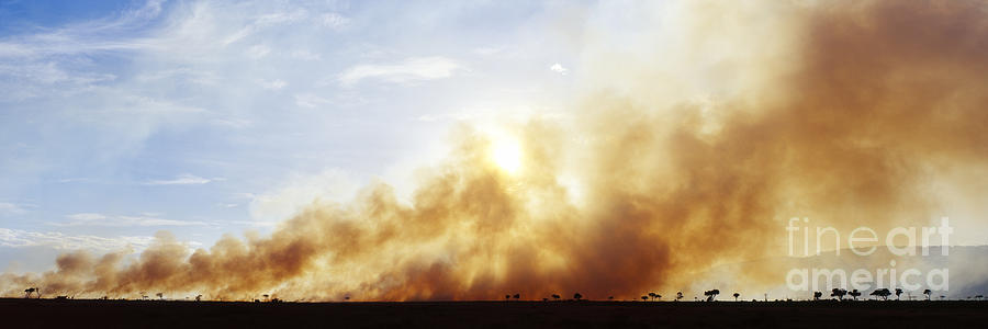 Africa Photograph - Controlled Burn Masai Mara Game Reserve by Jeremy Woodhouse