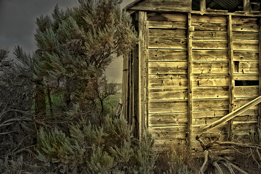 Convenience Shed Photograph  - Convenience Shed Fine Art Print