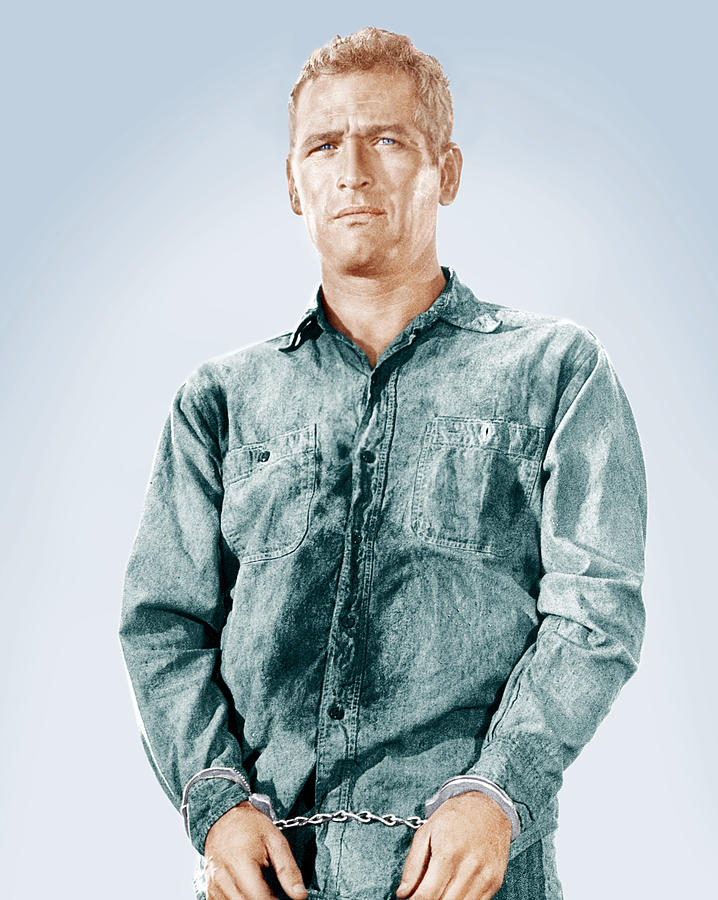 1960s Portraits Photograph - Cool Hand Luke, Paul Newman, 1967 by Everett