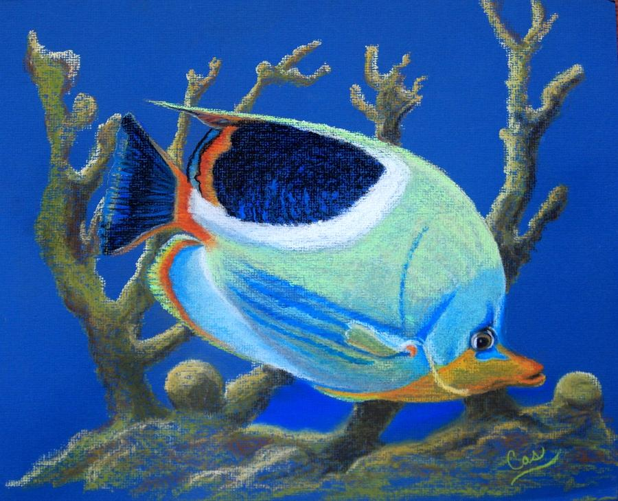 Fish Painting - Coral Garden by Karen Casciani