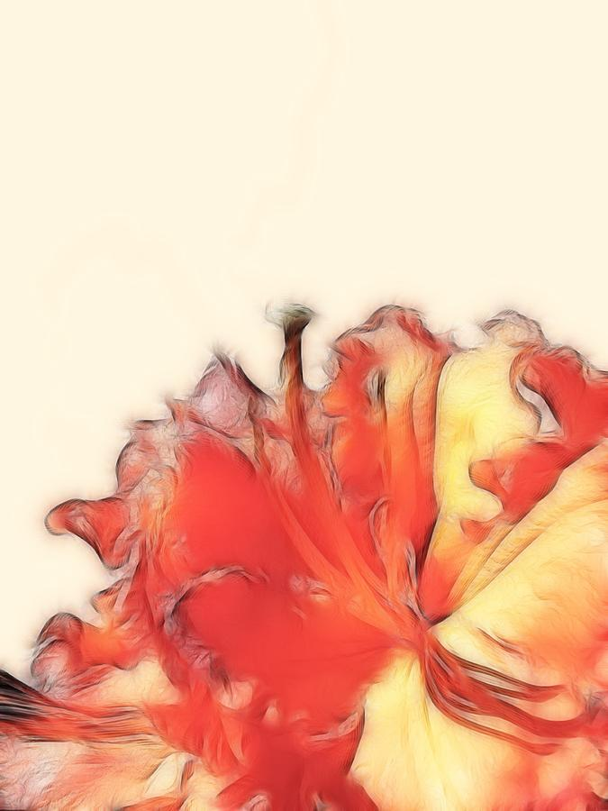 Coral Rhododendron Photograph