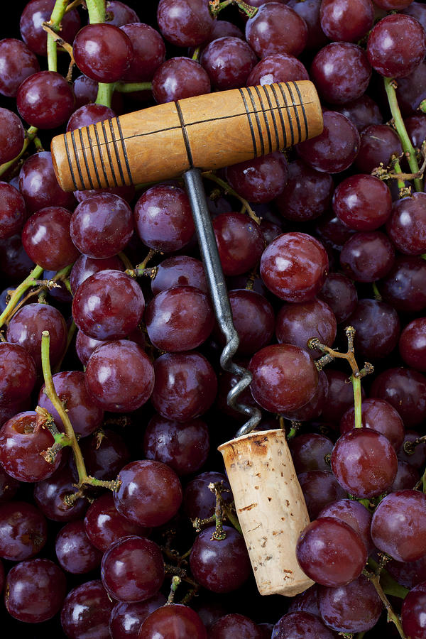 Corkscrew And Wine Cork On Red Grapes Photograph