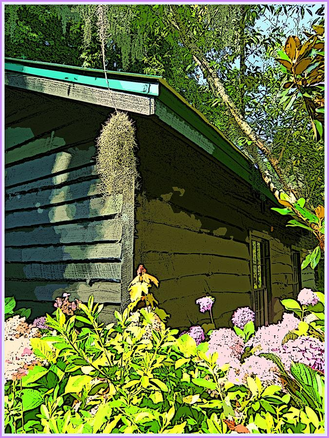 House Photograph - Cottage At Magnolia Plantation by Mindy Newman