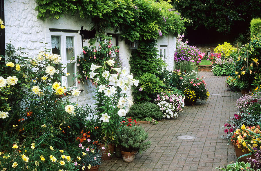 Cottage Small Brick Garden Patio Containers Photograph