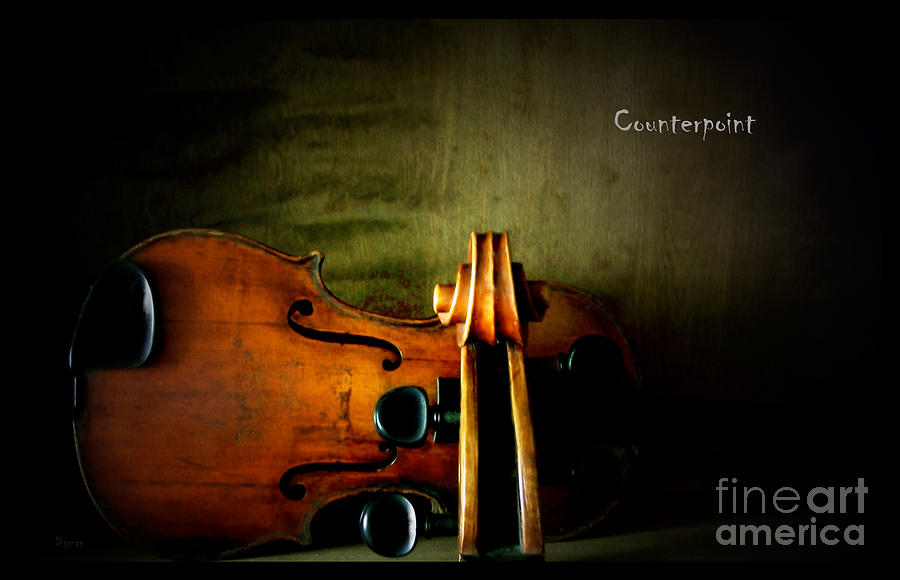 Counterpoint Photograph  - Counterpoint Fine Art Print