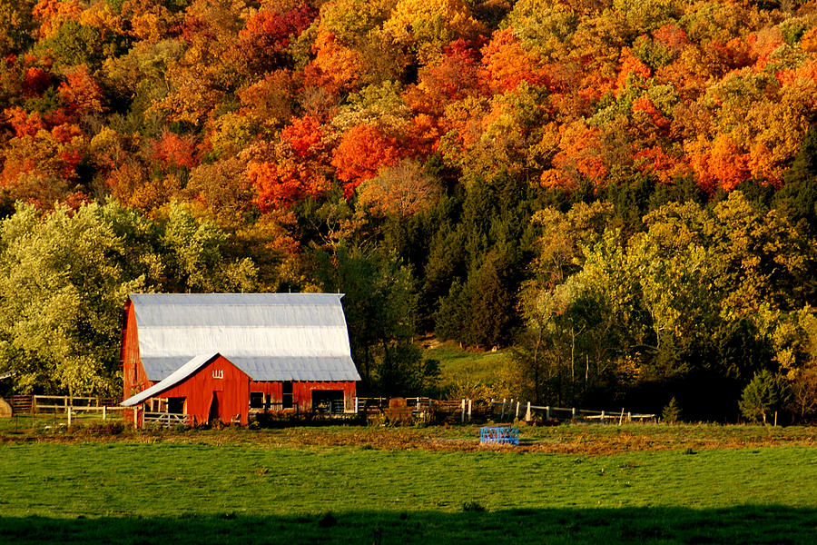 Country Barn In The Fall Photograph by DYSong Photography