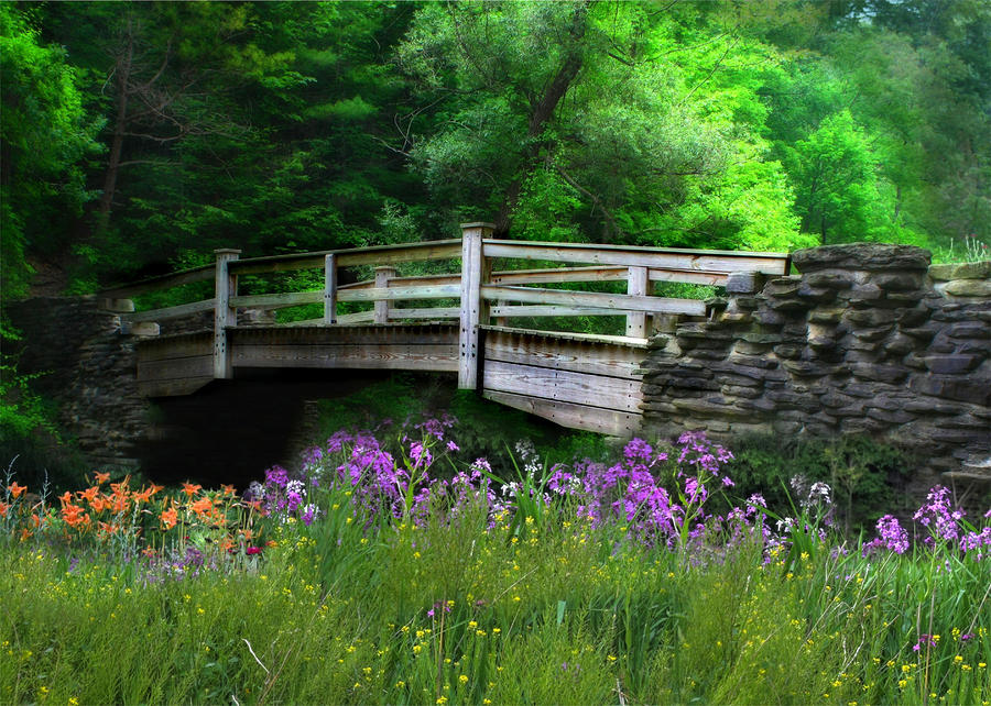 Country Bridge Photograph  - Country Bridge Fine Art Print
