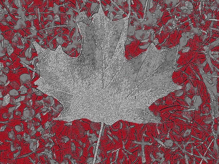 Country In Turmoil Digital Art