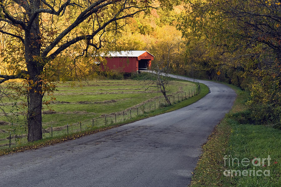 Road Photograph - Country Lane - D007732 by Daniel Dempster