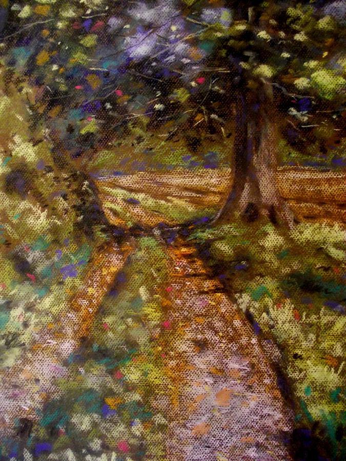 Landscape Pastel - Country Lane by John  Nolan