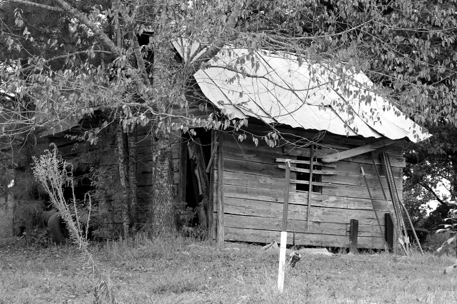 Country Shed Digital Art