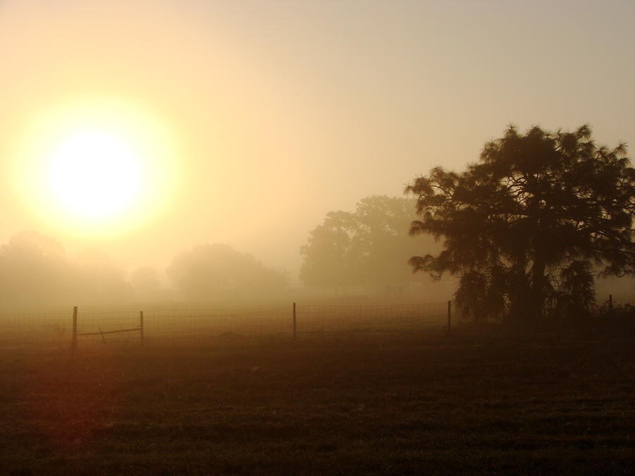 Country Sunrise Photograph  - Country Sunrise Fine Art Print