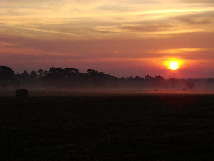 Country Sunrise Photograph by Michael MacGregor