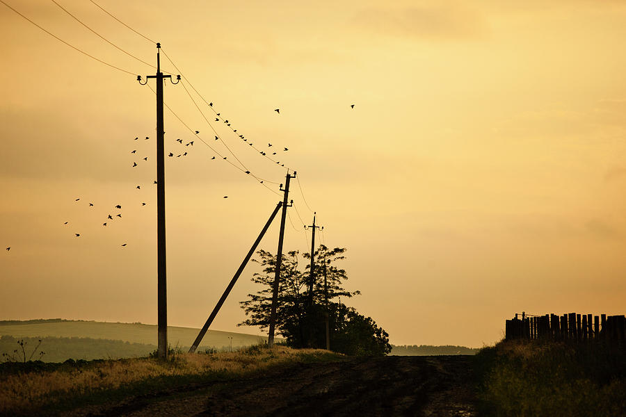 Countryside Road With Birds On Sky Photograph