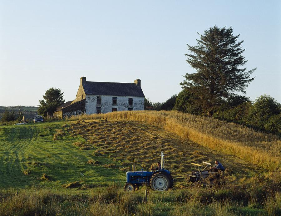 Agriculture Photograph - County Cork, Ireland Farmer On Tractor by Ken Welsh