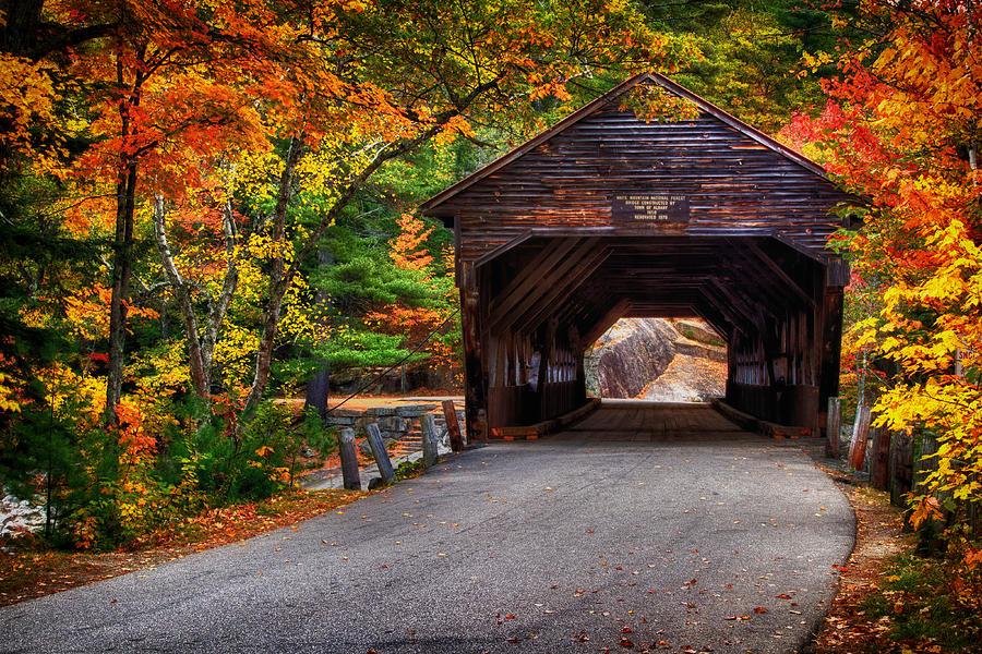 Covered Bridge In Fall Photograph By Richard Siggins