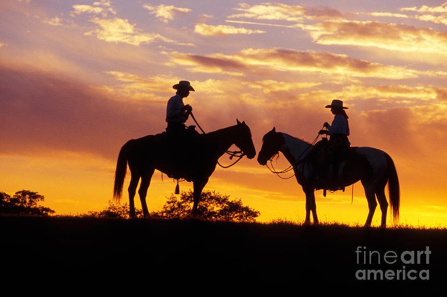 cowgirls looking for cowboys