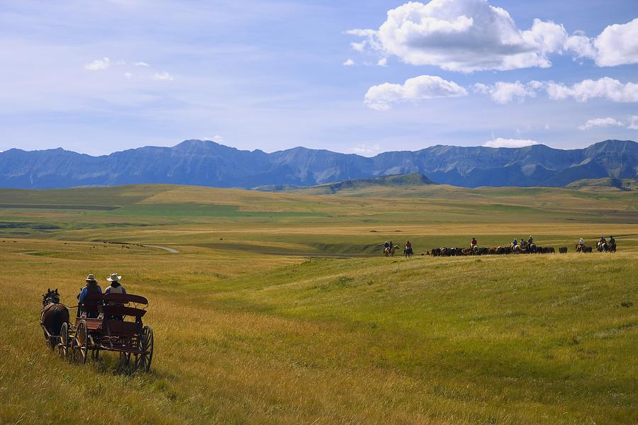 Cowboys And Wagon On A Cattle Drive Photograph  - Cowboys And Wagon On A Cattle Drive Fine Art Print