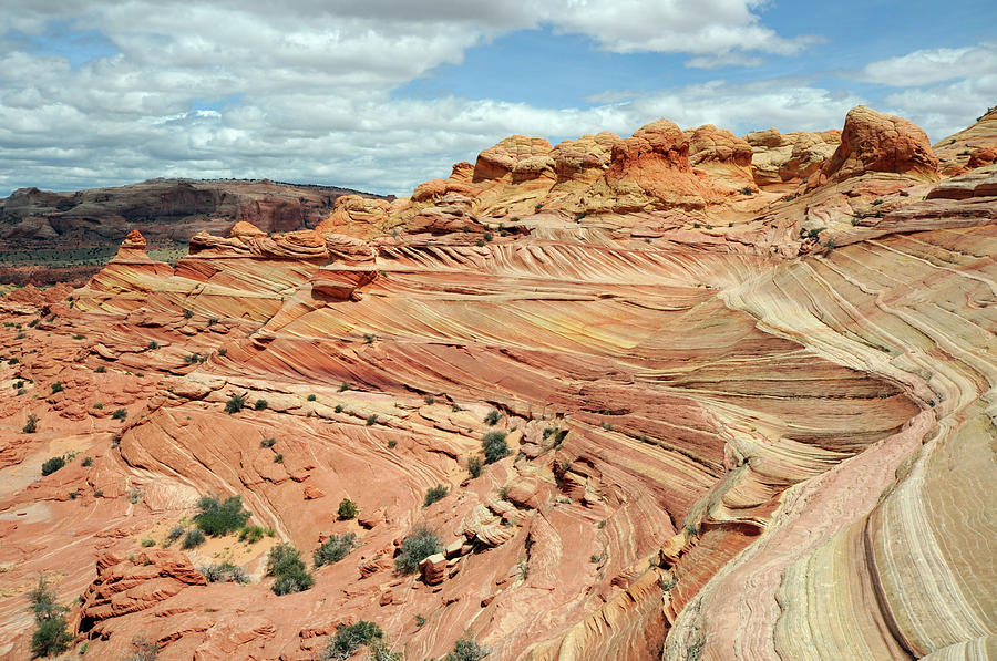 Coyote Buttes Photograph