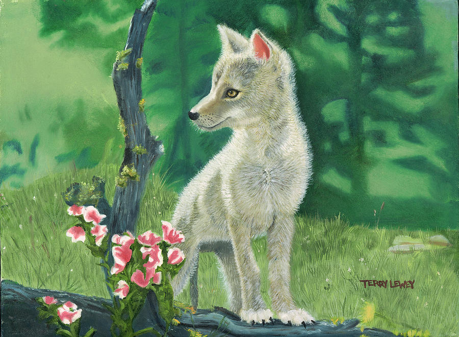 Coyote Pup Painting