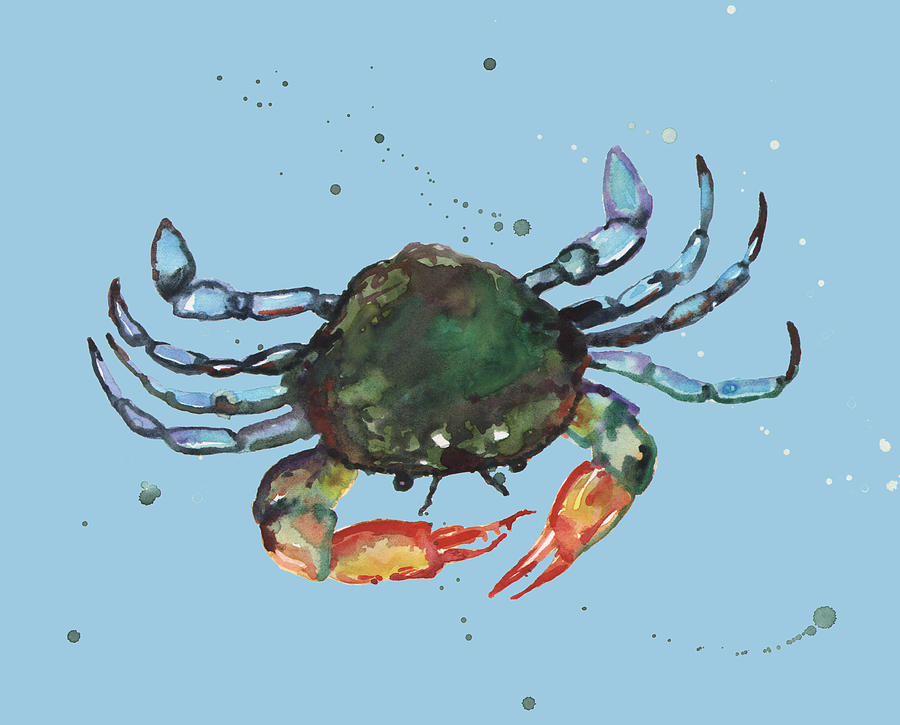 Crab - Blue Crab Painting  - Crab - Blue Crab Fine Art Print