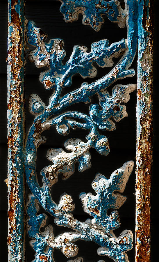 Paint Photograph - Crackled Coats by Christopher Holmes