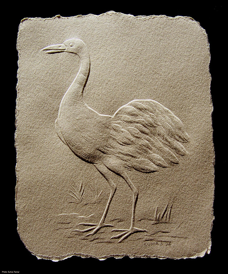 Crane Bird Relief  - Crane Bird Fine Art Print