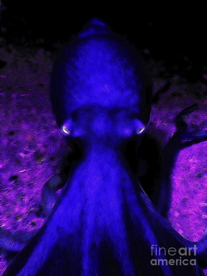 Creatures Of The Deep - The Octopus - V4 - Blue Photograph  - Creatures Of The Deep - The Octopus - V4 - Blue Fine Art Print