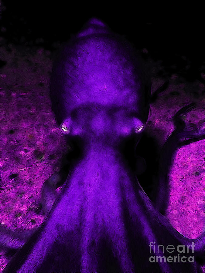 Creatures Of The Deep - The Octopus - V4 - Purple Photograph  - Creatures Of The Deep - The Octopus - V4 - Purple Fine Art Print