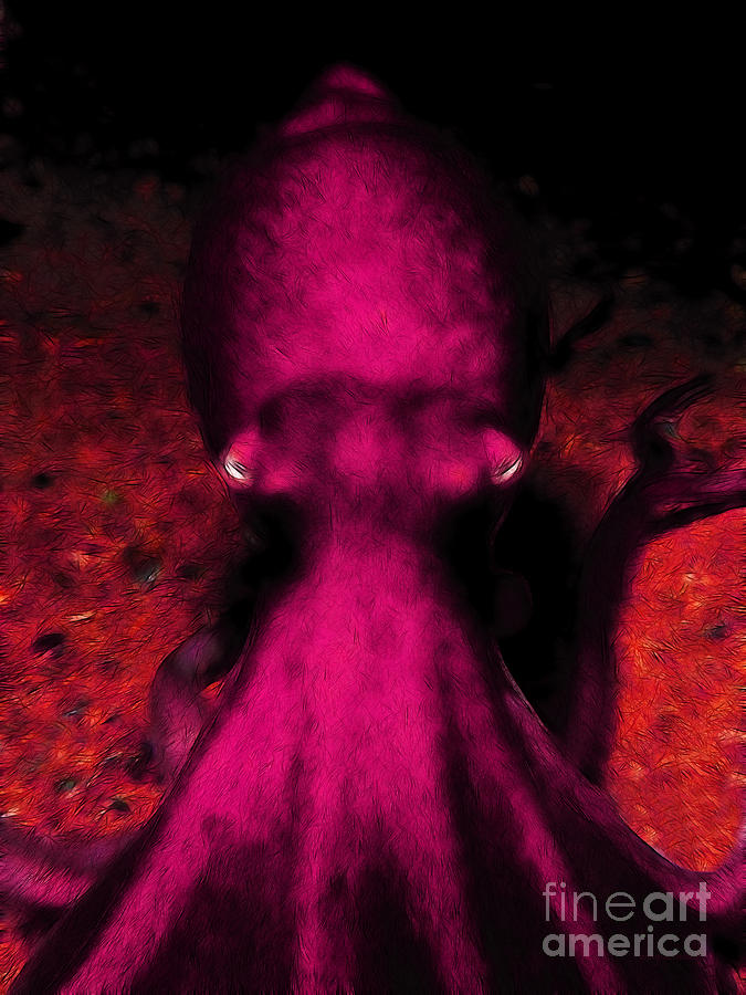 Creatures Of The Deep - The Octopus - V4 - Violet Photograph  - Creatures Of The Deep - The Octopus - V4 - Violet Fine Art Print