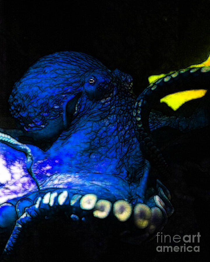 Creatures Of The Deep - The Octopus - V6 - Blue Photograph  - Creatures Of The Deep - The Octopus - V6 - Blue Fine Art Print