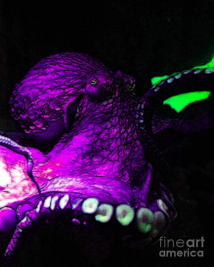 Creatures Of The Deep - The Octopus - V6 - Violet Photograph