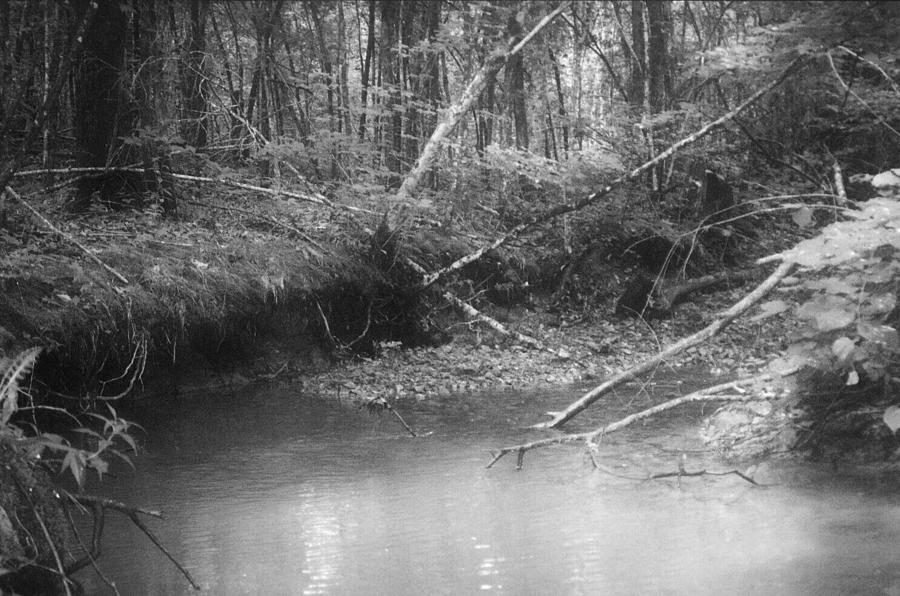 Creek Photograph