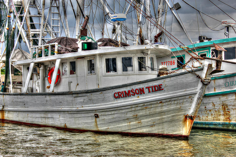 Crimson Tide Photograph