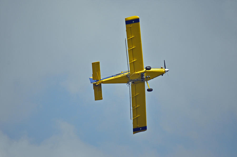 Cropduster 2 Photograph