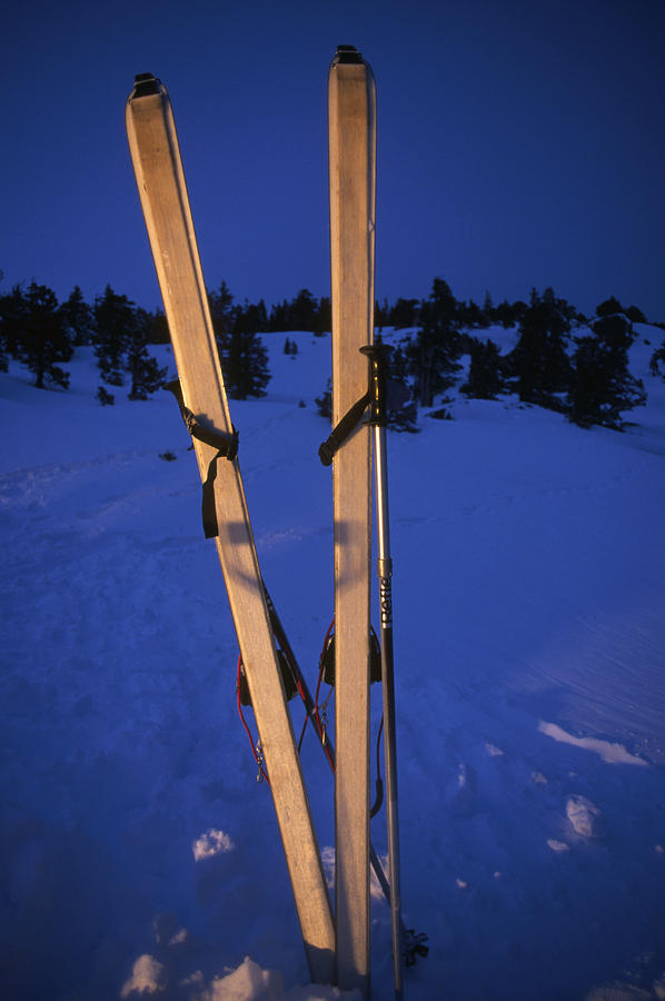 Cross-country Skis Standing Upright Photograph  - Cross-country Skis Standing Upright Fine Art Print