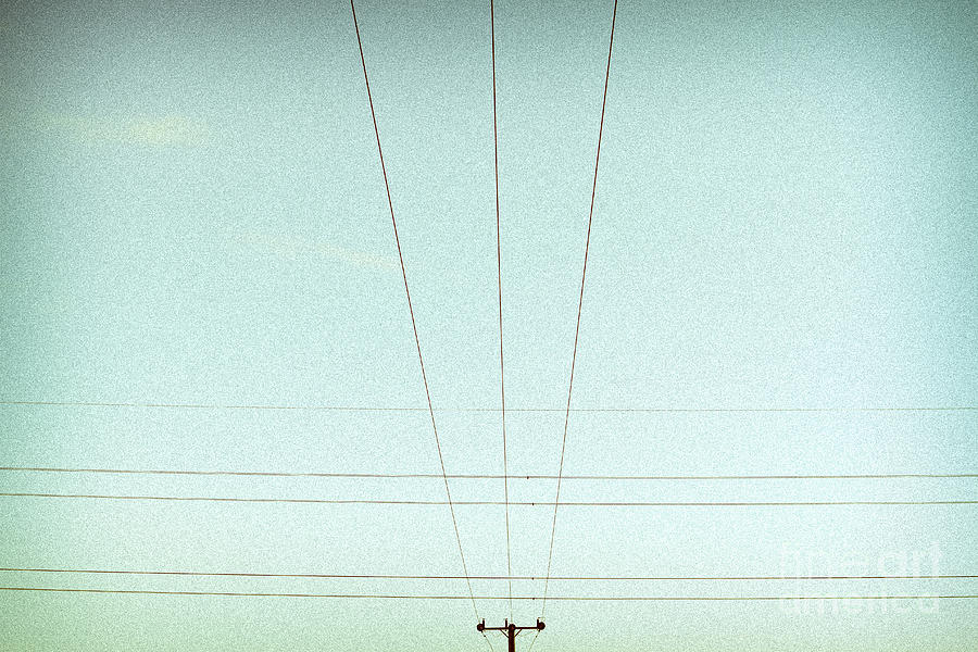 Crossed Wires Photograph  - Crossed Wires Fine Art Print